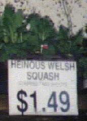 Heinous Welsh Squash