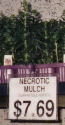 Necrotic Mulch