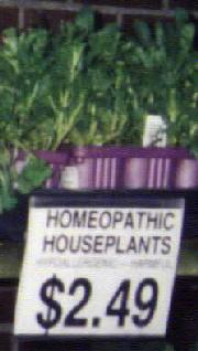 Homeopathic Houseplants
